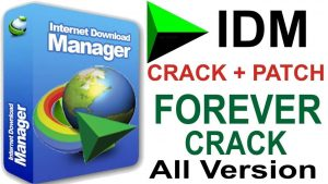 Idm Crack 6 38 Build 11 Retail Patch 2021 With Torrent Download