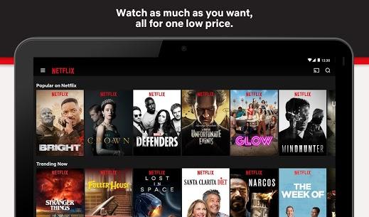Netflix Crack